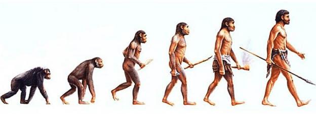 A evolução natural, de acordo com a Teoria de Charles Darwin