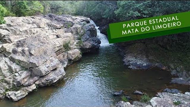 Parque Estadual Mata do Limoeiro, grande riqueza ambiental localizada no disrito de Ipoema