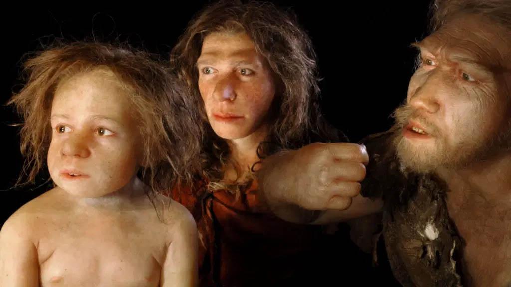 Cientistas calculam que restos de neandertais encontrados faziam parte de numerosa população que construiu a colonização italiana.
