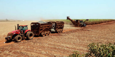 Redução da cana disponível no Centro-Sul e preços do açúcar cortam margem de produção do etanol (Imagem: Reuters/Paulo Whitaker)