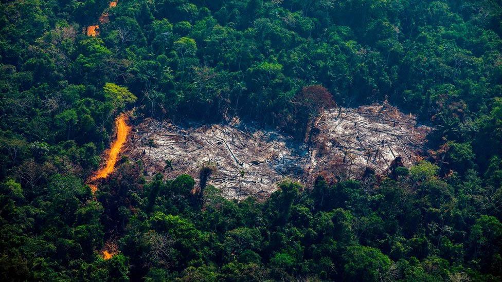Devastação na Amazônia foi a maior registrada desde março de 2011, um alerta para as autoridades e a sociedade agora no início da seca