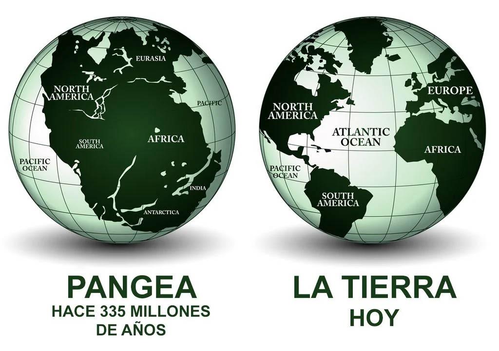 O processo de dispersão entre continentes continua até hoje