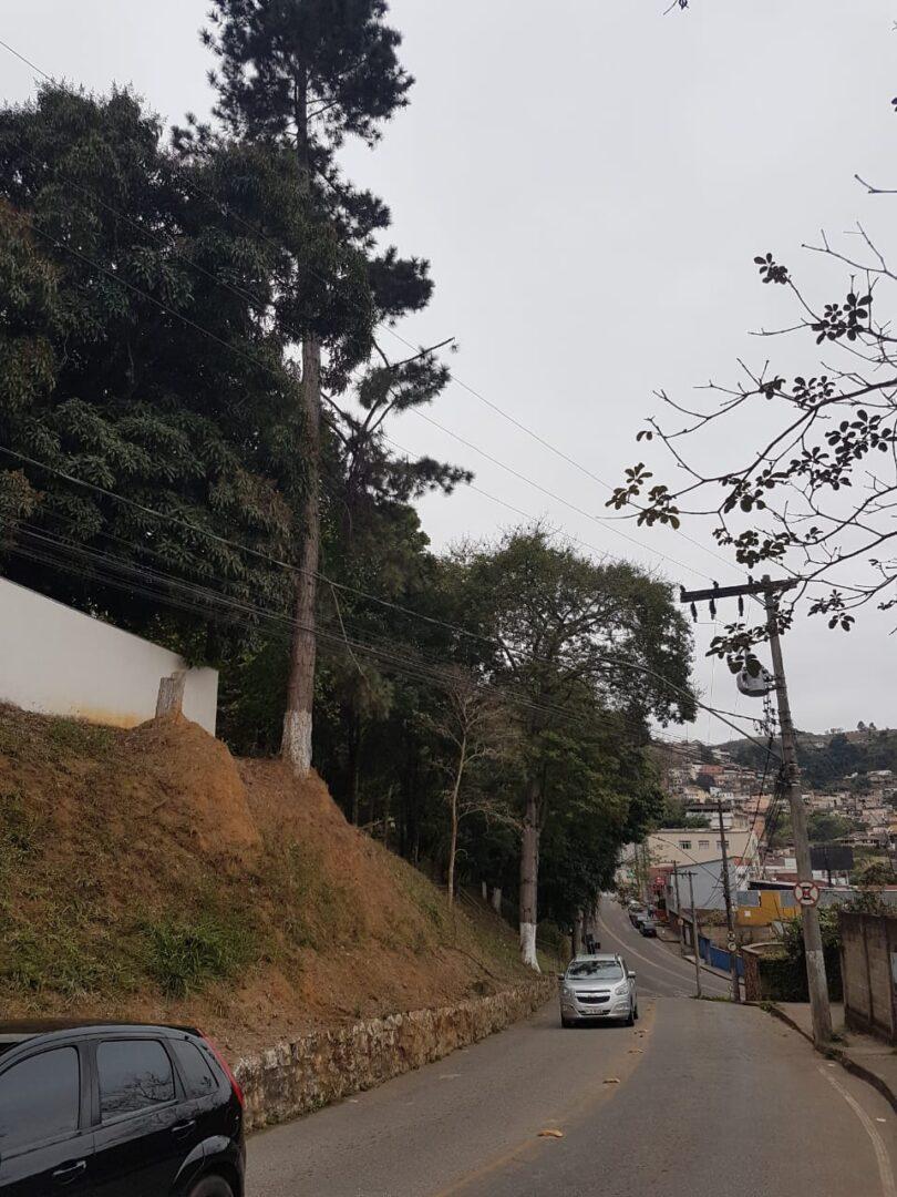 Podas e cortes de árvores nestes trechos próximo ao Hospital Nossa Senhora das Dores (Fotos: HNSD)