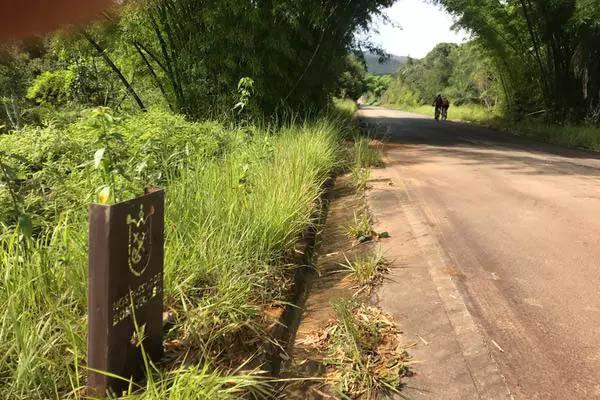 ... e em rodovias asfaltadas; o trajeto pode ser percorrido a pé ou de bike(Foto de João Lucas Ferreira Basílio/Divulgação)